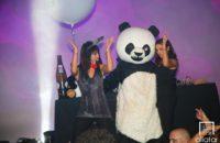 27/10/17 – Crazy Panda