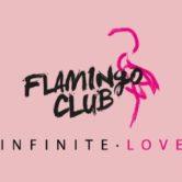Flamingo Club // Infinite Love