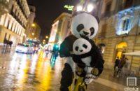 26/1/18 Crazy Panda